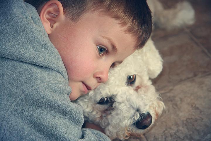 relación entre niños y mascotas