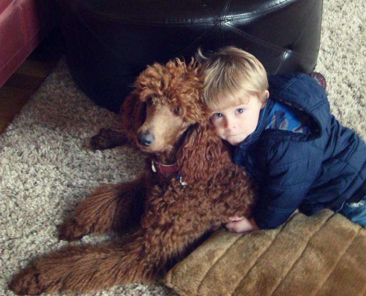 vida entre niños y mascotas